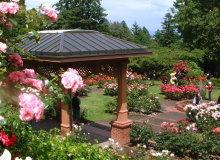 メアリーローズガーデン|バラの花とバラ園・イングリッシュガーデンサイト